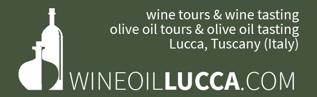 WineOilLucca, tours & tastings