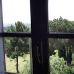 14 landscape tuscany olive oil tasting and tour