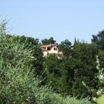 colinas-verdes