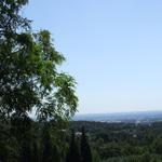 paisaje colinas verdes