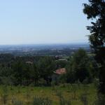 paysage-collines-verdoyantes,