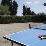 ping-pong-table-tennis