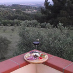 22 wine oil.tasting landascape nature lucca italy montecarlo